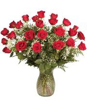 Two Dozen Roses in Vase