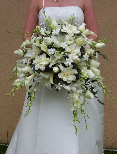 Cascade Bridal Bouquet Instructions : Royer s flowers gifts gallery plants gift