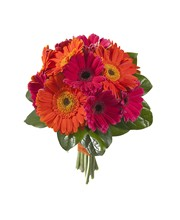 Packages   Royer\'s flowers and gifts - Flowers, Plants and Gifts ...